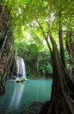 Deep forest waterfall at Erawan waterfall National Park Kanchana. Buri Thailand Royalty Free Stock Image