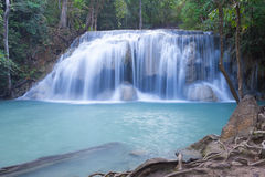 Deep forest waterfall at Erawan waterfall Royalty Free Stock Image
