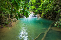 Deep forest waterfall at Erawan waterfall National Park Royalty Free Stock Photo