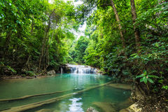 Deep forest waterfall at Erawan waterfall National Park Royalty Free Stock Image