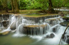 Deep forest Waterfall Stock Image
