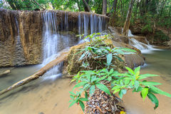 Deep forest Waterfall in Kanchanaburi (Huay Mae Kamin) Stock Images