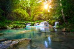 Deep forest waterfall  National Park Royalty Free Stock Photo