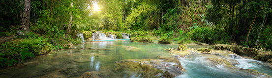 Deep forest waterfall National Park. Panoramic view royalty free stock photo