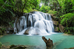 Deep forest waterfall in national park Royalty Free Stock Photography