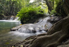 Deep forest Waterfall, Saraburi, Thailand Stock Image