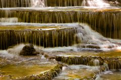 Deep forest waterfall stream motion royalty free stock photography