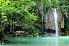 Deep forest waterfall Stock Photos