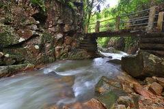 Deep forest waterfall in Thailand Royalty Free Stock Images