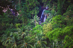 Deep forest Waterfall in Thailand Stock Image