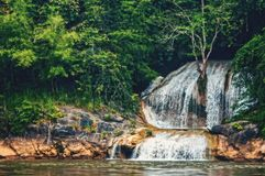 Deep forest waterfall in the wild tropical forest. The shoreline of the river. The horizontal frame Royalty Free Stock Photo