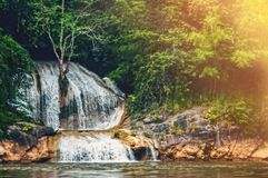 Deep forest waterfall in the wild tropical forest. The shoreline of the river. Toned. Sunny summer. Deep forest waterfall in the wild tropical forest. The Royalty Free Stock Photos