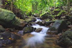 Deep forest waterfallDeep Royalty Free Stock Photo