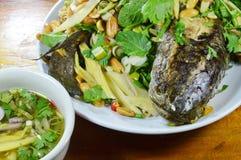 Deep fried镶边了蛇顶头鱼用蘸甜调味汁的混杂的草本 免版税图库摄影