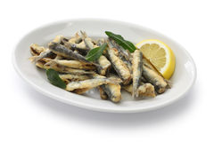 Deep fried anchovies Royalty Free Stock Photos