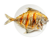 Deep fried black pomfret fish Royalty Free Stock Image