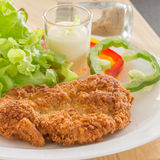 Deep fried breaded pork rice with salad Stock Image