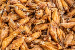 Deep fried chicken wings Royalty Free Stock Photography