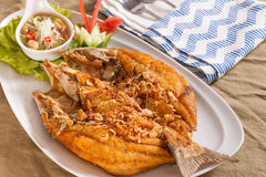 Deep fried fish. A dish of brown crispy deep fried whole sea bass fish with Thai style spicy dip sauce Stock Photos