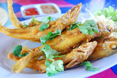 Deep-fried fish Royalty Free Stock Images