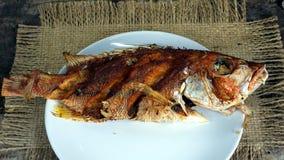 Deep fried fish royalty free stock photos