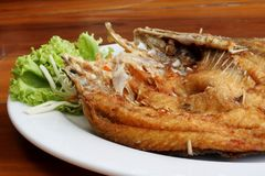Deep fried fish with vegetables. On white dish Royalty Free Stock Photography