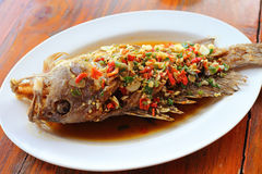 Deep fried grouper fish in chilly sauce Royalty Free Stock Photo