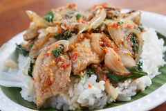 Deep fried grouper fish Royalty Free Stock Photos