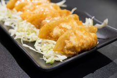 Deep Fried Gyuza Royalty Free Stock Images
