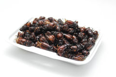 Deep Fried insects Stock Images