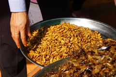 Deep fried insects Royalty Free Stock Photography