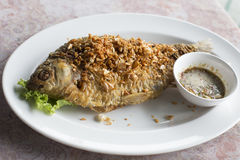 Deep fried java barb fish with garlic Stock Photos