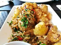 Deep fried lightly tempura seafood squid garlic Thai style dish. In Bangkok Thailand Royalty Free Stock Photo