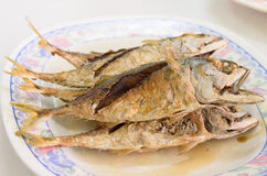 Deep fried mackerel with fish sauce Stock Images