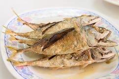 Deep fried mackerel with fish sauce Stock Images