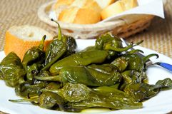 Free Deep Fried Padron Peppers. Royalty Free Stock Photo - 30489095
