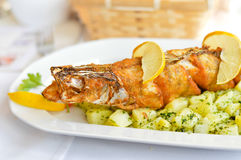 Deep fried pike fish on boiled potato pillow with butter and herbs. Closeup on deep fried pike fish on boiled potato pillow with butter and herbs Royalty Free Stock Photography