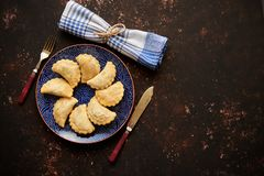 Deep Fried polish dumplings with meat filling. Placed on a blue ceramic plate. Top view on rusty brown background with copy space stock image