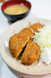 Deep fried pork with cabbage set royalty free stock photos