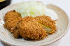 Deep fried pork with cabbage set stock photos