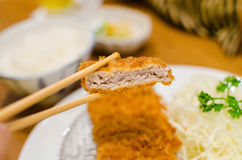Deep fried pork with cabbage set royalty free stock image