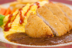 Deep fried pork with curry sauce and omelette. Delicious deep fried pork with curry sauce and omelette Stock Images