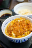 Deep fried pork with egg and rice royalty free stock photo