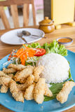 Deep fried pork with rice Royalty Free Stock Images