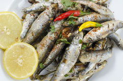 Deep fried raw sprats, Whitebaits Royalty Free Stock Photo