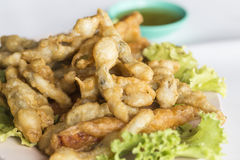 Deep fried razor clam with powder Stock Image