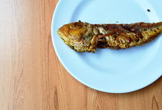 Deep fried red snapper with turmeric powder on plate Stock Photos
