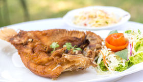 Deep fried red tilapia with fish sauce. Royalty Free Stock Images