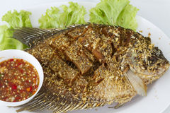 Deep fried red tilapia fish Royalty Free Stock Photos