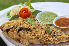 Deep Fried Red Tilapia with Garlic and Pepper Stock Images